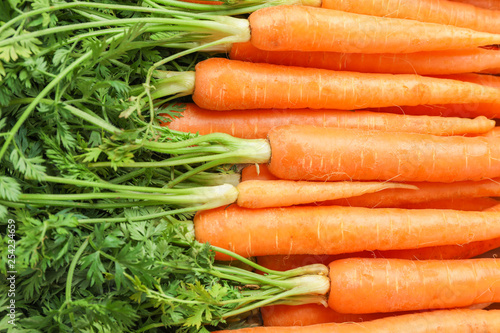 Fotografía Ripe fresh carrots as background, space for text