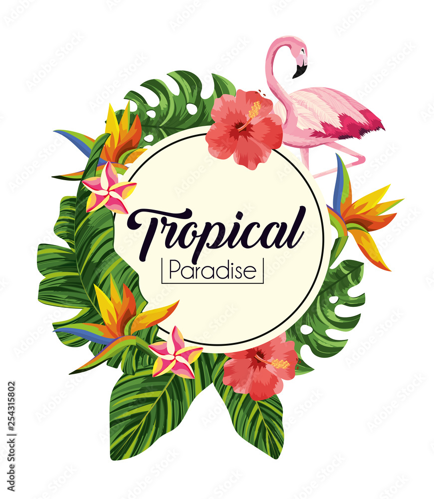 label with tropical flowers with exotic leaves <span>plik: #254315802 | autor: Stockgiu</span>