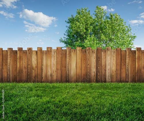 Fotografie, Obraz spring tree in backyard and wooden garden fence