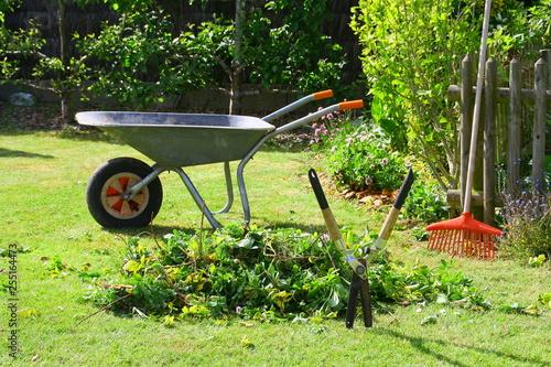 Obraz na płótnie brouette de déchets verts dans le jardin