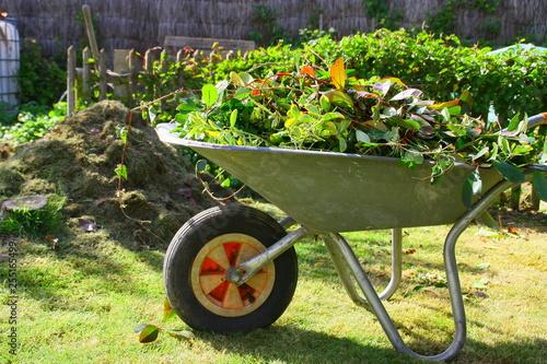Valokuva brouette de déchets verts dans le jardin