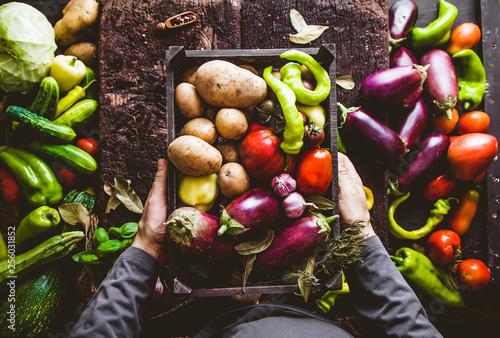 Fototapete Farmer with zucchini