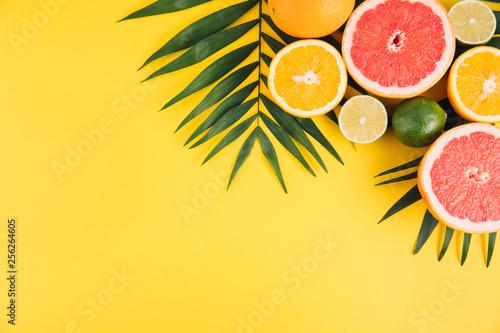 Obraz na plátně Summer fruits
