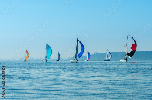 Regatta sailing boats on the river, reflection on the water in the distance shore Fototapeta