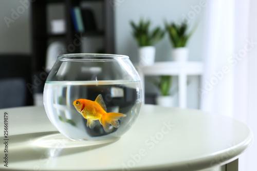 Fototapeta Glass fishbowl on table