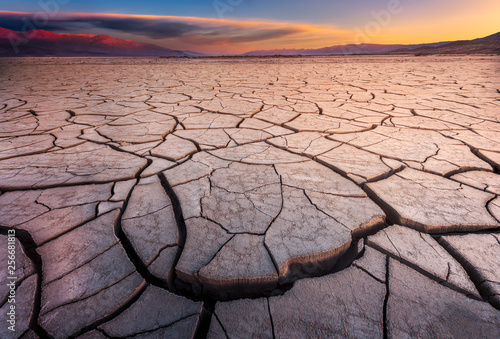 Wallpaper Mural Cracked Mud Flats Bathed in Dawn Light