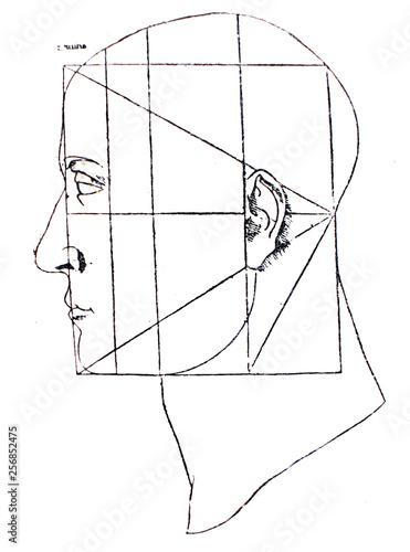 Fotografija Proportions of head by Leonardo Da Vinci in a vintage book Leonard de Vinci, Eug