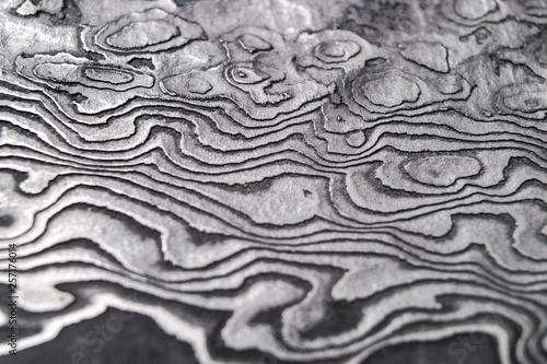 Fotografia Background with pattern of damask steel