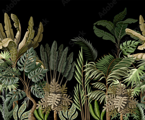 Seamless border with tropical tree such as palm, banana, monstera. Vector.