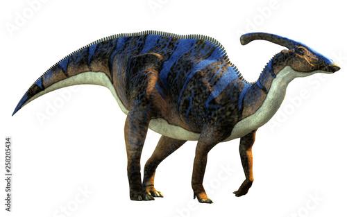Canvas Print A parasaurolophus, a type of herbivorous ornithopod dinosaur of the hadrosaur family in profile on a white background