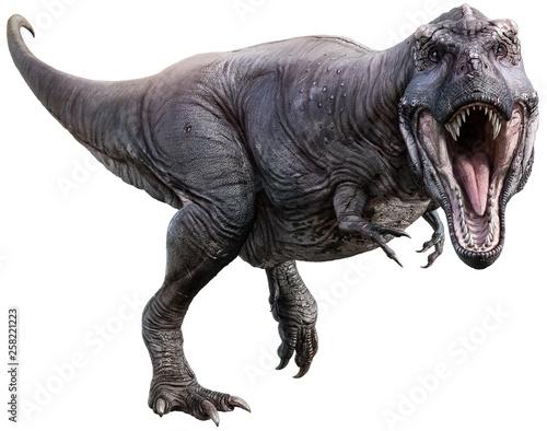 Wallpaper Mural Tyrannosaurus 3D illustration