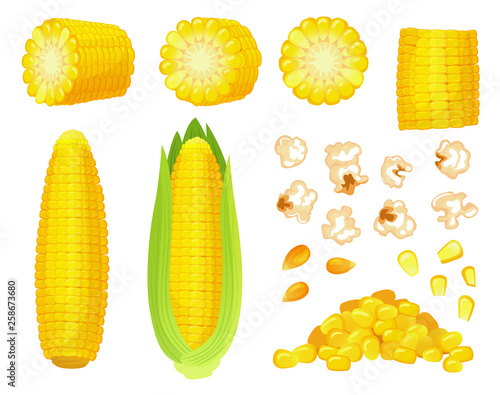 Canvas Cartoon corn