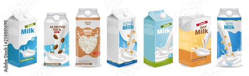Canvas Print Milk boxes set Vector realistic