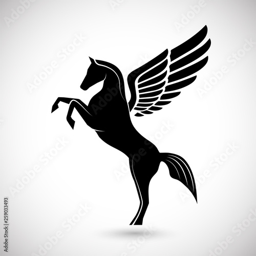 Fototapeta silhouette pegasus mythical creature horse with wings