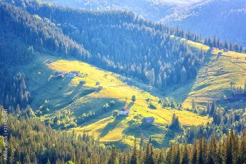 Canvas Print Amazing nature, summer daytime landscape
