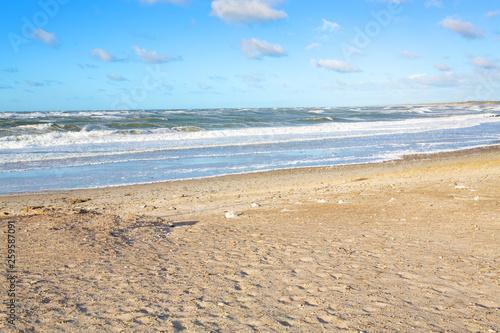 Canvas Print North Sea coast in northern Jutland, Denmark