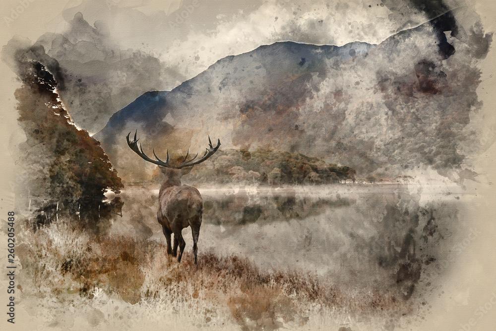 Akwarela z Oszałamiająco potężnego jelenia jelenia wychodzi na jezioro w kierunku górskiego krajobrazu w scenie jesiennej <span>plik: #260205488 | autor: veneratio</span>