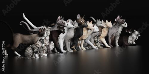 Fotografia Lots of cats together in lline 3d render