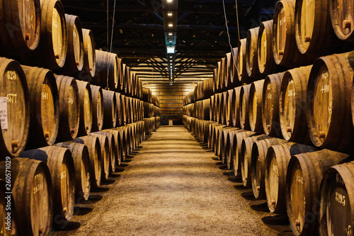 Billede på lærred Old aged traditional wooden barrels with wine in a vault lined up in cool and da
