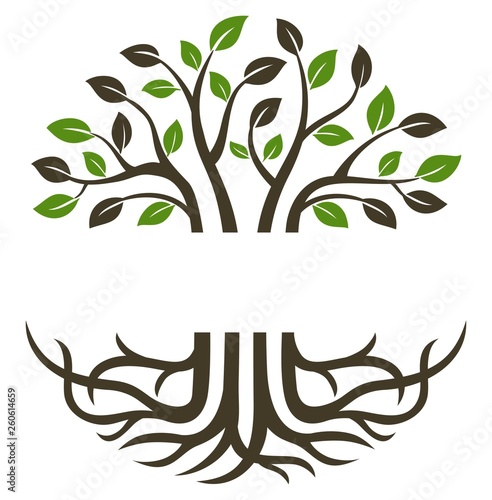 Photo Circular trees and roots suitable for icons, logos, symbols and more