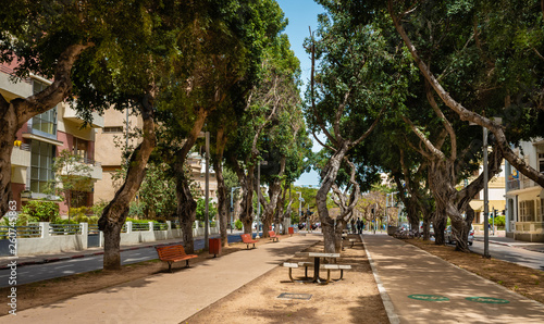 Canvas View of boulevard Rothschild, the most prestige and luxury area in Tel Aviv