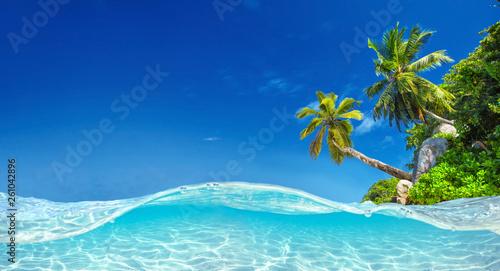Fotografia Seychelles Islands. Palm Beach In Tropical Paradise