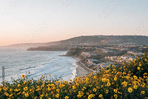 Fényképezés Yellow flowers and view of Strand Beach from Dana Point Headlands Conservation A