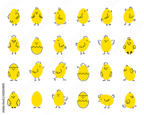 Cuadros en Lienzo Easter funny cute chickens, flat vector illustration on white isolated background