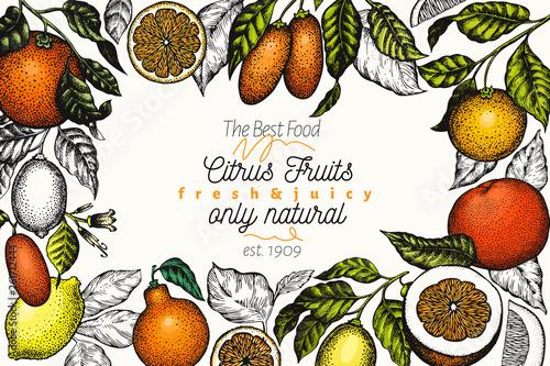 Foto Citrus design templete