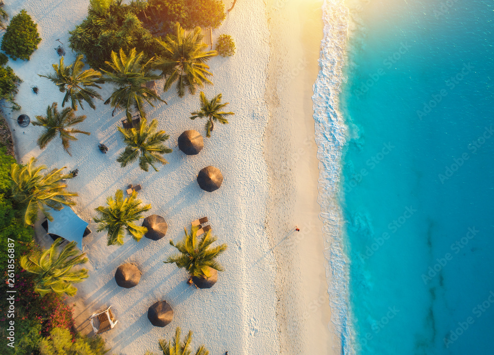 Aerial view of umbrellas, palms on the sandy beach of Indian Ocean at sunset. Summer holiday in Zanzibar, Africa. Tropical landscape with palm trees, parasols, white sand, blue water, waves. Top view - obrazy, fototapety, plakaty