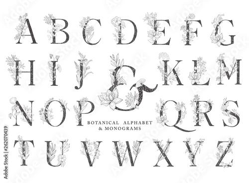 Fotografie, Tablou Floral botanical alphabet. Letter with plants and flowers.