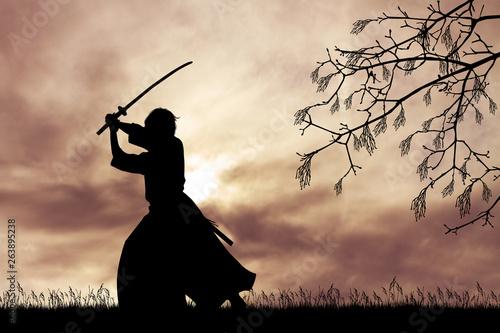 Carta da parati Samurai with sword at sunset