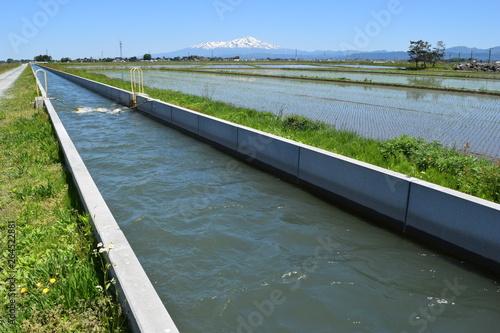 Fotografia 農業用水路