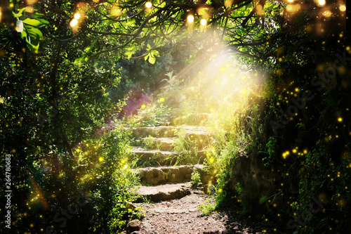 Stampa su Tela Road and stone stairs in magical and mysterious dark forest with mystical sun light and firefly