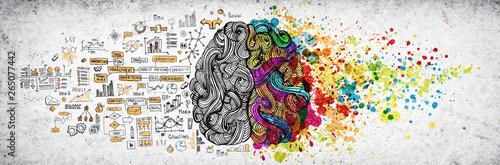 Left right human brain concept, textured illustration Fototapete