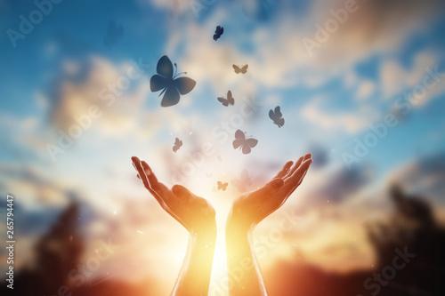 Fotografia Hands close up on the background of a beautiful sunset, a flock of butterflies flies, enjoying nature