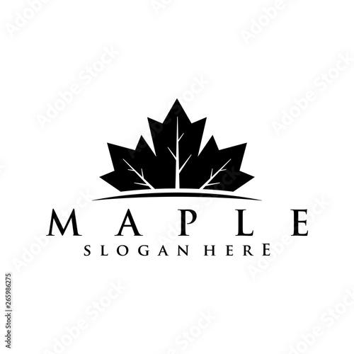 Obraz na plátně maple logo concept