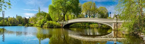 Obraz na płótnie Bow Bridge in Central Park, New York City, NY,  USA