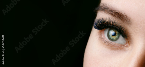 Fotografia Close up view of beautiful green female eye with long eyelashes and perfect trendy eyebrows on dark background