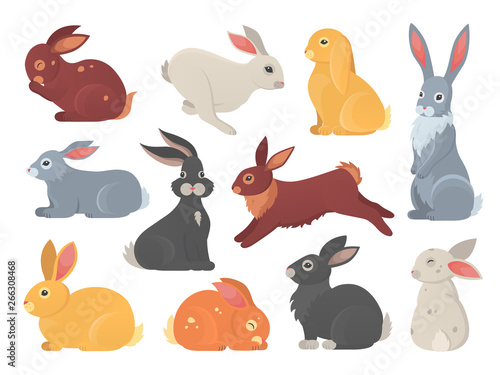 Leinwand Poster Vector set of cute rabbits in cartoon style