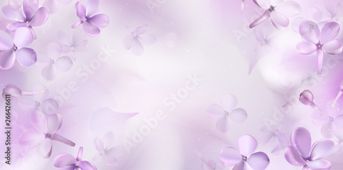 Floral spring background with purple lilac flowers