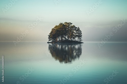 Fotografia, Obraz Tiny island covered by forest on the lake.