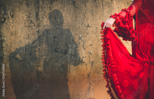 Stampa su Tela Shadow of woman dressed in flamenco dress on cracked wall