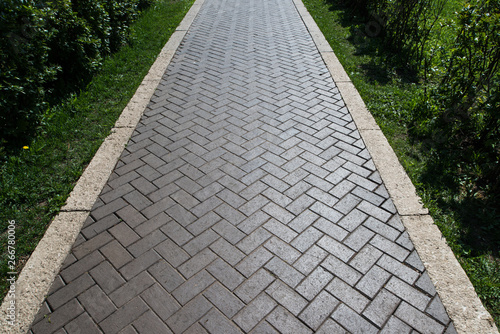 Stampa su Tela Paving slabs in the green garden