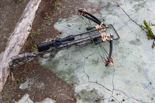 Fotografia hunting crossbow with an arrow