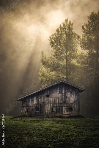 Alte Hütte im Wald mit Sonnenstrahlen Fototapeta