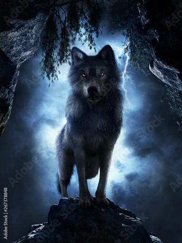 Wolf at the entrance to the cave