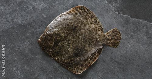 Fototapeta Raw whole flounder fish on dark stone background, top view