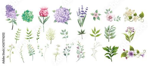 zestaw kolekcji zielone liście i styl akwarela kwiat do drukowania, ślubu, dekoracji, kwiaciarni, ilustracji wektorowych wizytówki