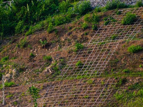 Tablou Canvas Shallow cellular confinement system to prevent soil erosion on slope